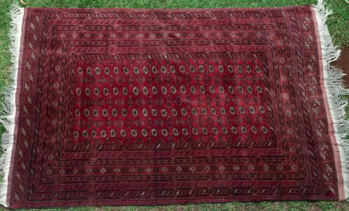 Old Afghan Tekke Carpet