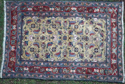 Old Shirvan Caucasian Rug