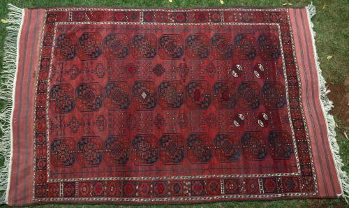 Old Ersari Afghan Main Carpet